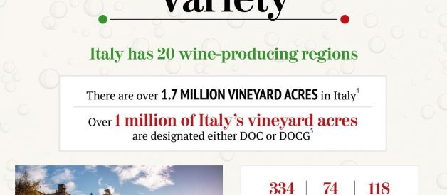 Italian wines by the numbers [Infographic]