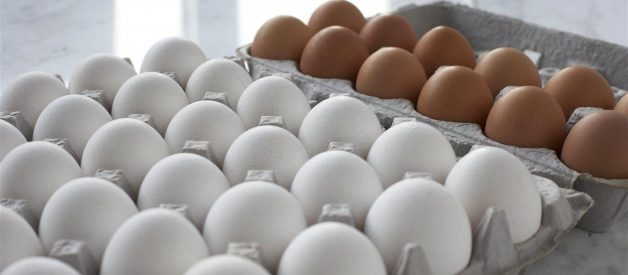 America's egg farmers donate record-breaking 46 million eggs to food banks