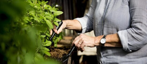 Senior woman working with plants