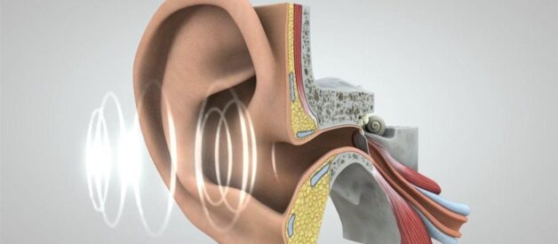 Protect Your Hearing When Life Gets Loud